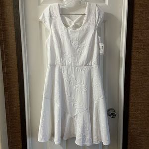 Dressbarn White Scoop Neck Fit & Flare Dress 12